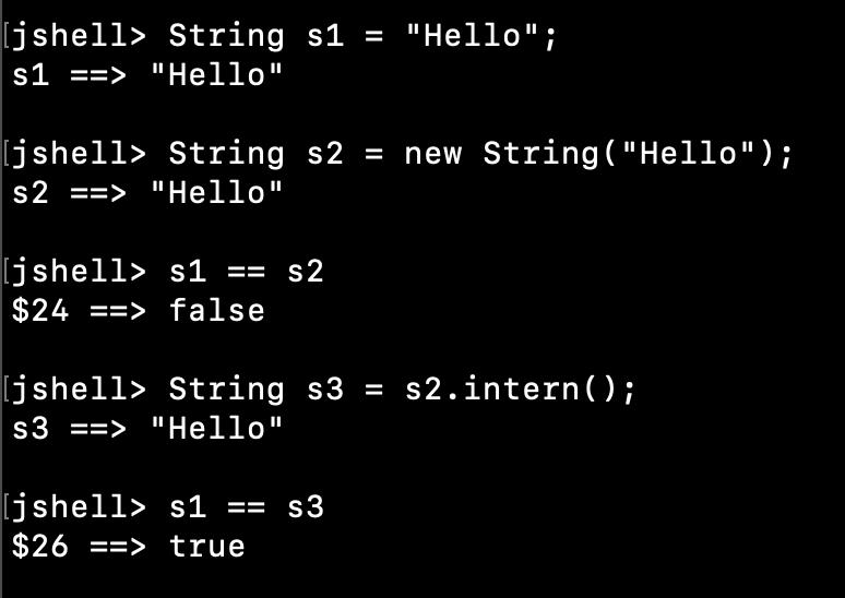 Java String Intern Method Example