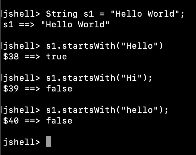 Java String StartsWith Example