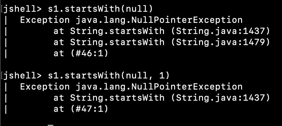 Java String Startswith Nullpointerexception