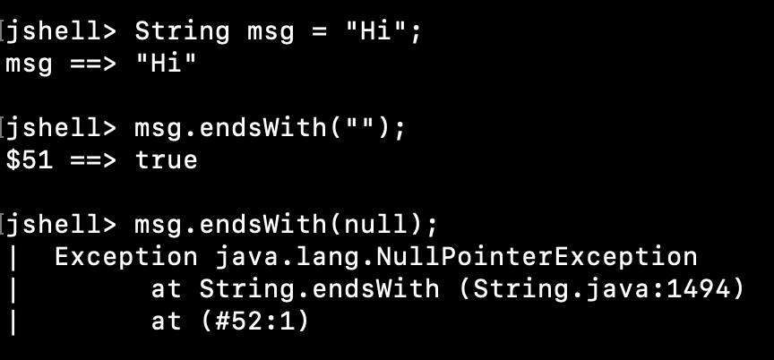 String EndsWith Null Empty String